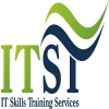 IT Skills Training Services
