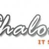 Shalomitschool
