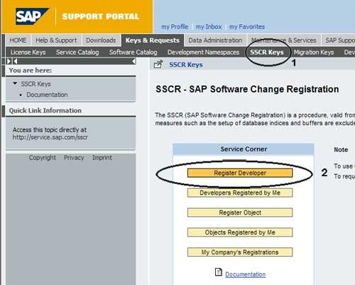 What is sap developer
