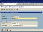 STMS in Single System by using Virtual System