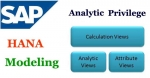 Create the Analytic Privilege for HANA Modeling