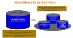 Master Data available in FICO