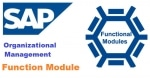 SAP HR OM useful Function Modules - Organizational Management