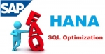 SAP HANA SQL Optimization Interview Questions and Answer
