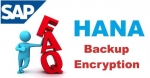 SAP HANA Backup Encryption Interview Question and Answer
