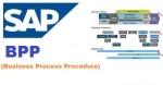 Business Process Procedure (BPP)