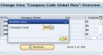Difference between Company and Company Code in SAP System