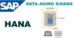 Data Aging Function Technicality in SAP HANA
