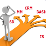 Which SAP Course, Module do I select for my Career in SAP?