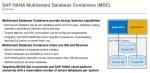 SAP HANA MDC Service Connection Setup