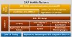 Uninstall SAP HANA XS Advanced
