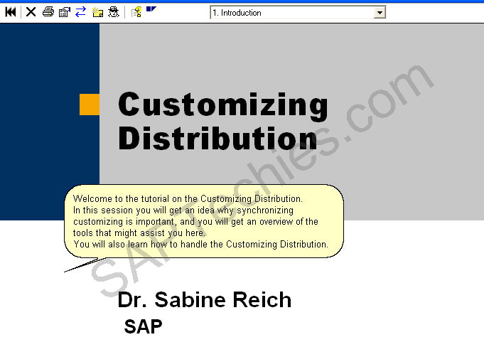 How to handle Customizing Distribution in SAP Solution Manager