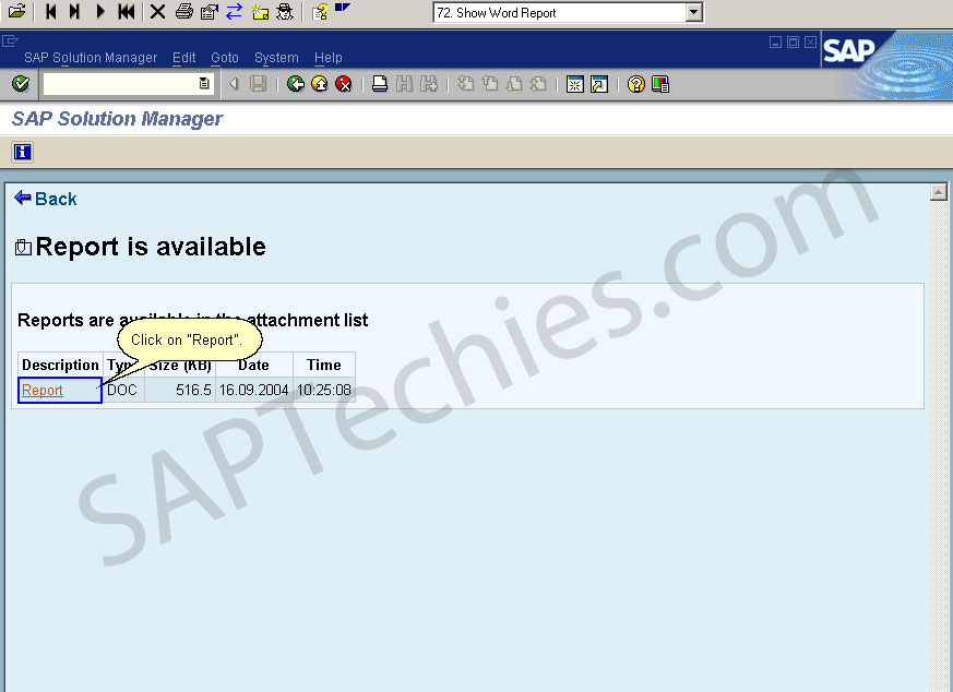 Service Level Reporting with in the SAP Solution Manager