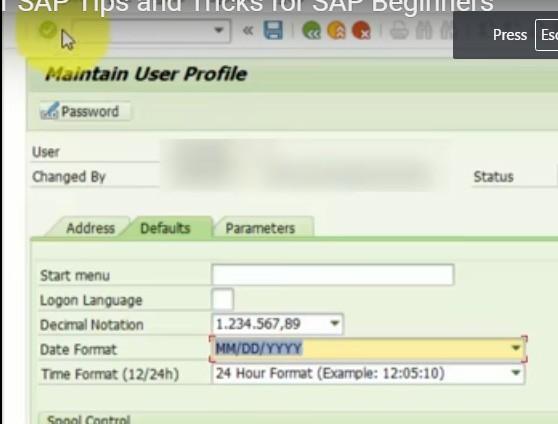 sap change date format