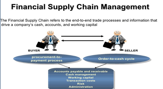 sap fscm financial supply chain management closer look