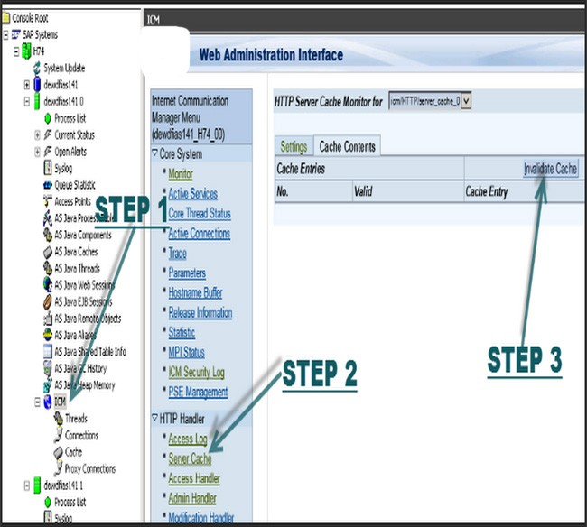 Clear the HTTP Cache content on SAP Netweaver Application