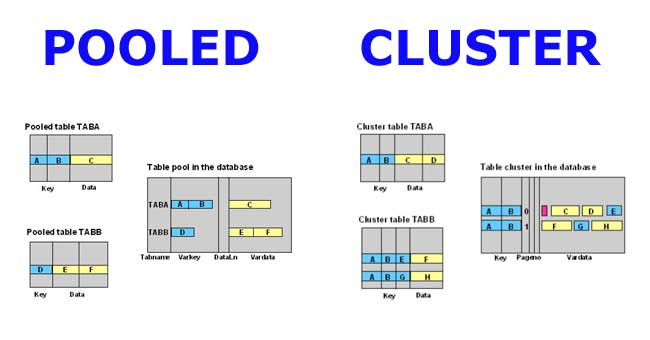 Difference between Pooled and Cluster Tables in SAP ABAP