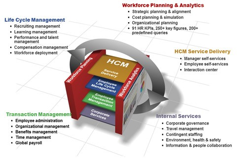 What Is Sap Hcm Human Capital Management Course Fees