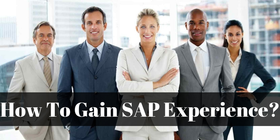 SAP-Experience