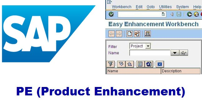 SAP PE, Full form and Meaning