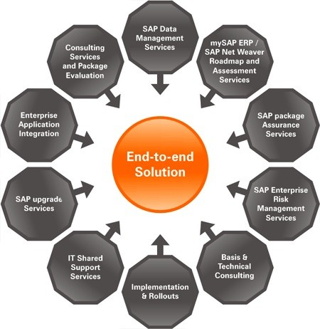 SAP IS, Full form and Meaning