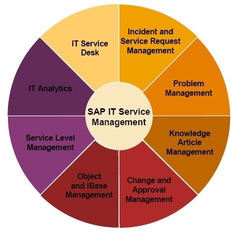 SAP IT Management - An Overview