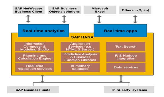 SAP HANA Database: Issue Solved with the Revision 60