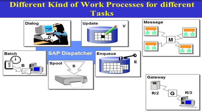 Work Process Types in SAP in SAP BASIS