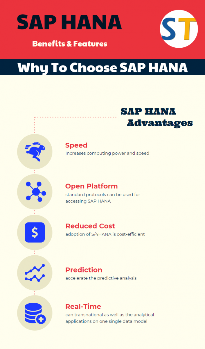 SAP HANA, Full form and Meaning