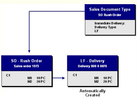 Differences between Cash Sales and Rush Order in SAP SD